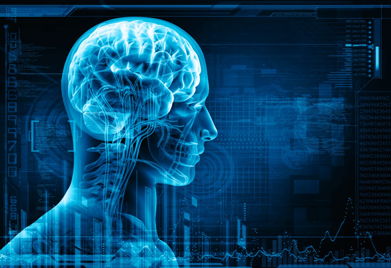 Beyni kandaki bir madde kontrol ediyor